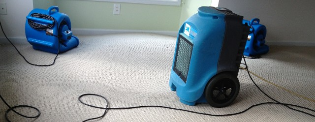 water extraction services in sahuarita AZ - fans on carpets